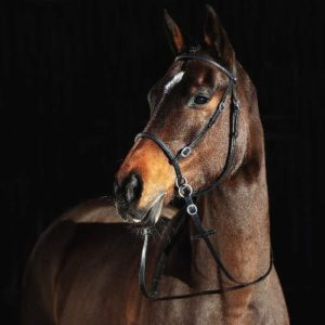 Horze Leather Bitless Bridle