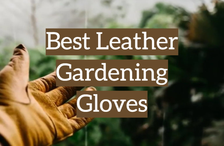 5 Best Leather Gardening Gloves