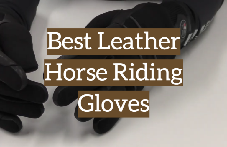 5 Best Leather Horse Riding Gloves