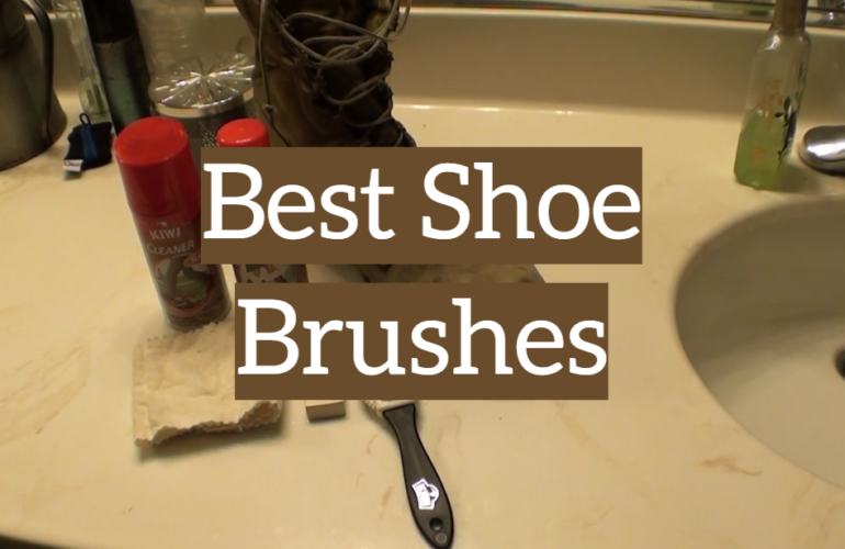 5 Best Shoe Brushes