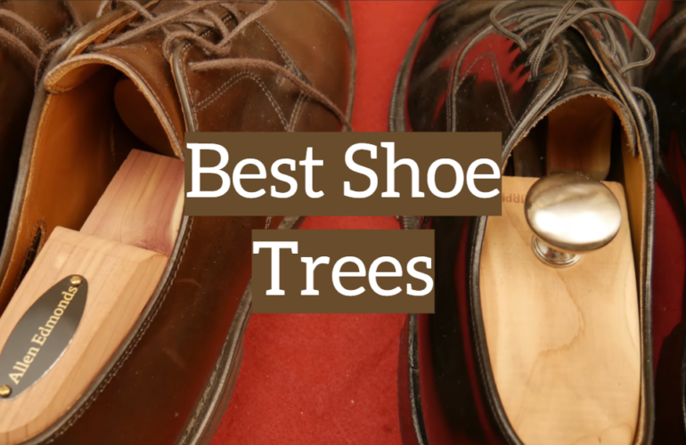 5 Best Shoe Trees