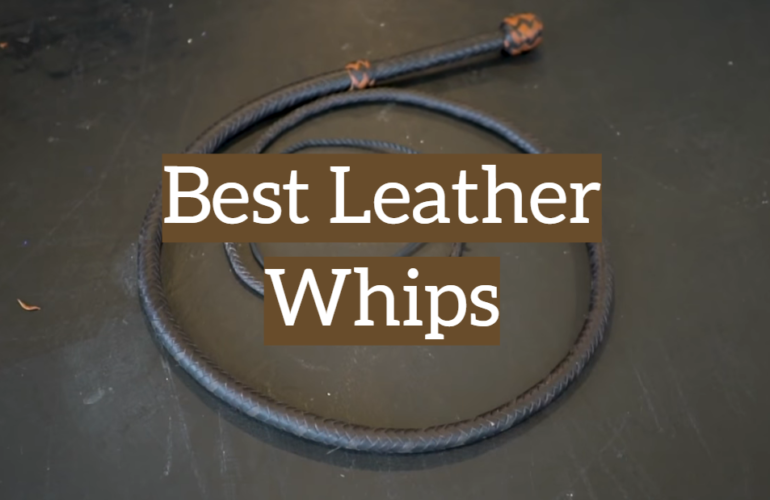 5 Best Leather Whips