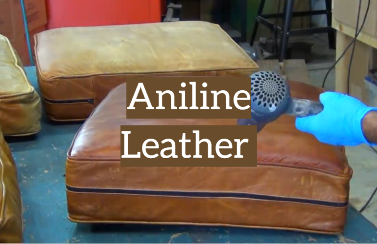 The Guidelines for Users of Aniline Leather